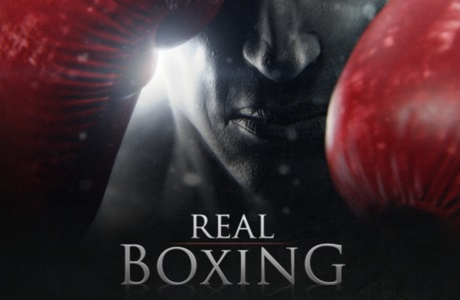 Real Boxing [źródło: Vivid Games]