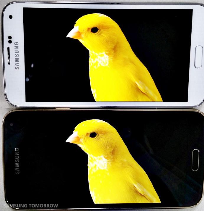 Ekran w Galaxy S5 kontra ekran w Galaxy S5 LTE-A