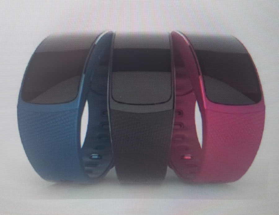 Samsung Gear Fit 2 / fot. SamMobile