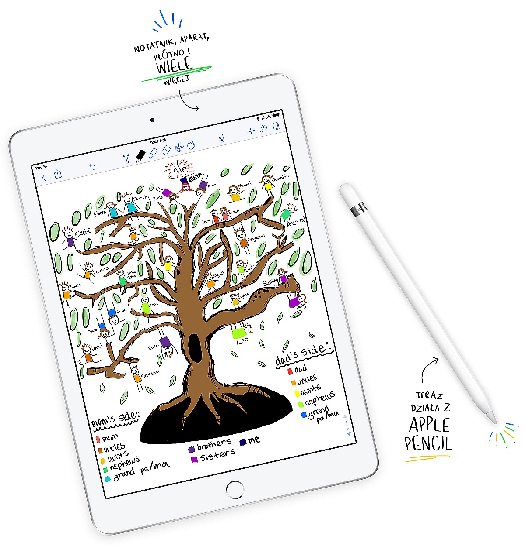 New iPad 9,7 (2018)